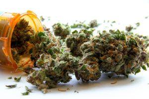 Marijuana sales top $3.1M in Illinois on first day of legalization Marijuana