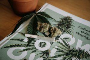 How Cannabis Relieves Nausea